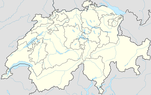Map of Fribourg (ville suisse) with markings for the individual supporters