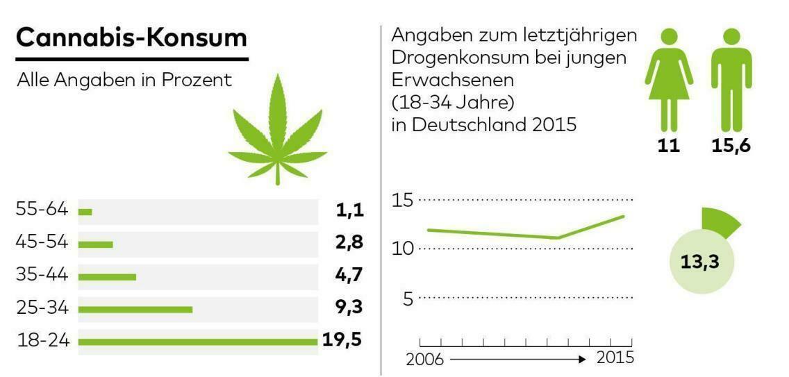Studien Cannabiskonsum