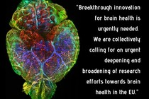 Call for increased emphasis on brain research in the strategic plan for Horizon Europe