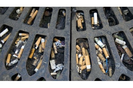 Bild zur Petition mit dem Thema: STOP Cigarettes buds polluting our streets